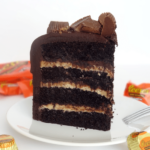 Chocolate Peanut Butter Cake slice