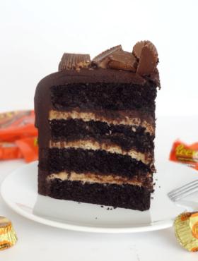 Chocolate Peanut Butter Cake slice