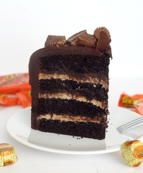 chocolate_peanut_butter_cake4