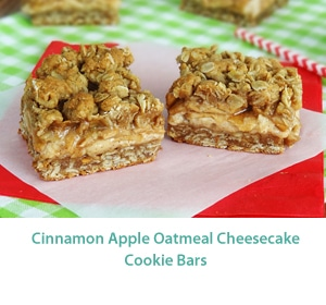 Cinnamon_Apple_Oatmeal_Cheesecake_bars_MID