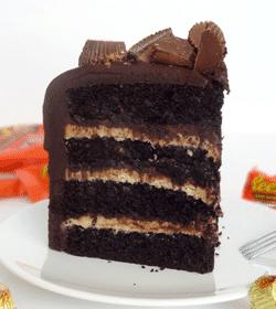 Peanut Butter and Chocolate Cake slice