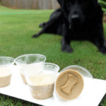 2 Ingredient Frozen Peanut Butter Banana Dog Treats and One Happy Pup