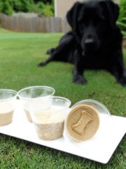 Image of 2 Ingredient Frozen Peanut Butter Banana Dog Treats and One Happy Pup