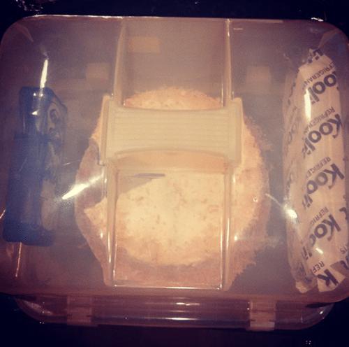 cake_carrier