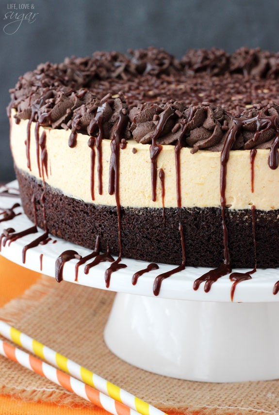 Side view of a Pumpkin Chocolate Brownie Cheesecake on a white cake stand