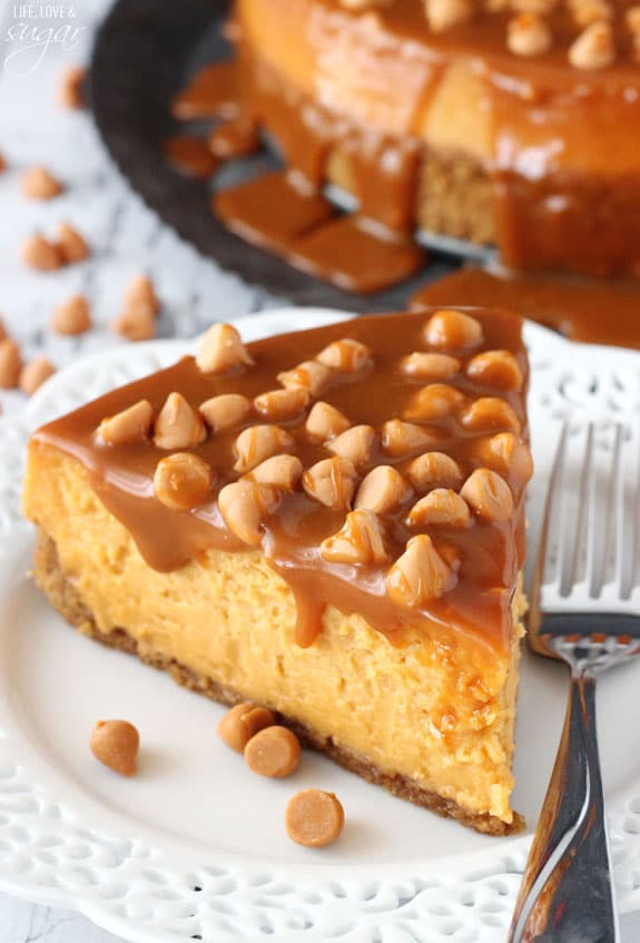 Loaded Butterscotch Cheesecake - so amazingly full of butterscotch! To die for!