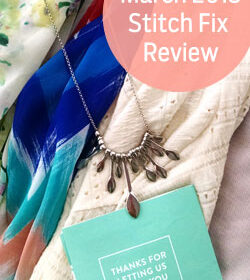 March 2015 Stitch Fix Review items