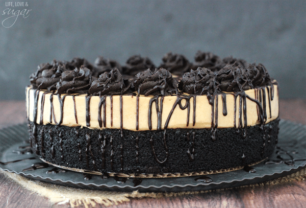 Peanut Butter Truffle Chocolate Cake - a layer of moist chocolate cake topped with a layer of peanut butter truffle!
