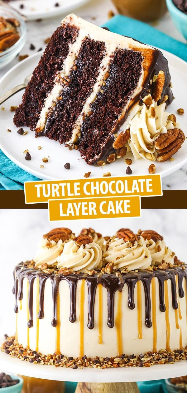 slice of turtle layer cake and full cake