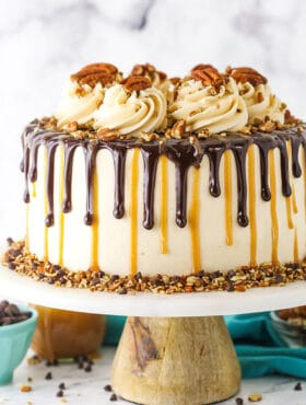turtle chocolate cake on stand closeup
