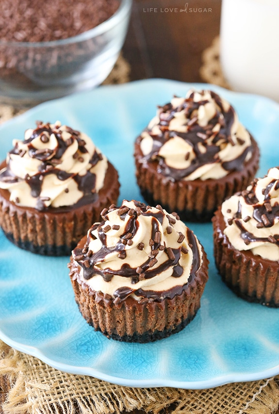 Best Mini Chocolate Cheesecakes