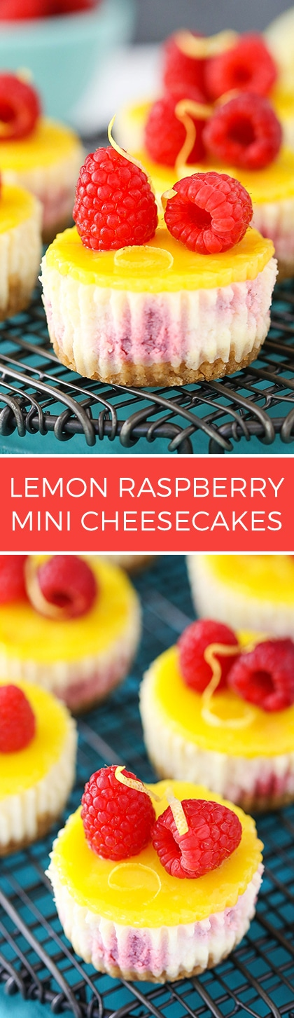 Lemon Raspberry Mini Cheesecakes - Easy to make and a delicious dessert recipe!