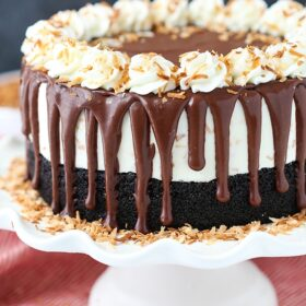 full image of Toasted Coconut Chocolate Ice Cream Cake