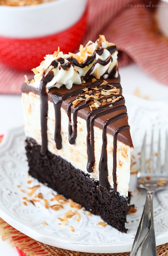 Best Toasted Coconut Chocolate Ice Cream Cake