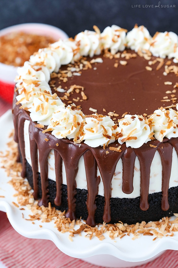 Decorated Toasted Coconut Chocolate Ice Cream Cake