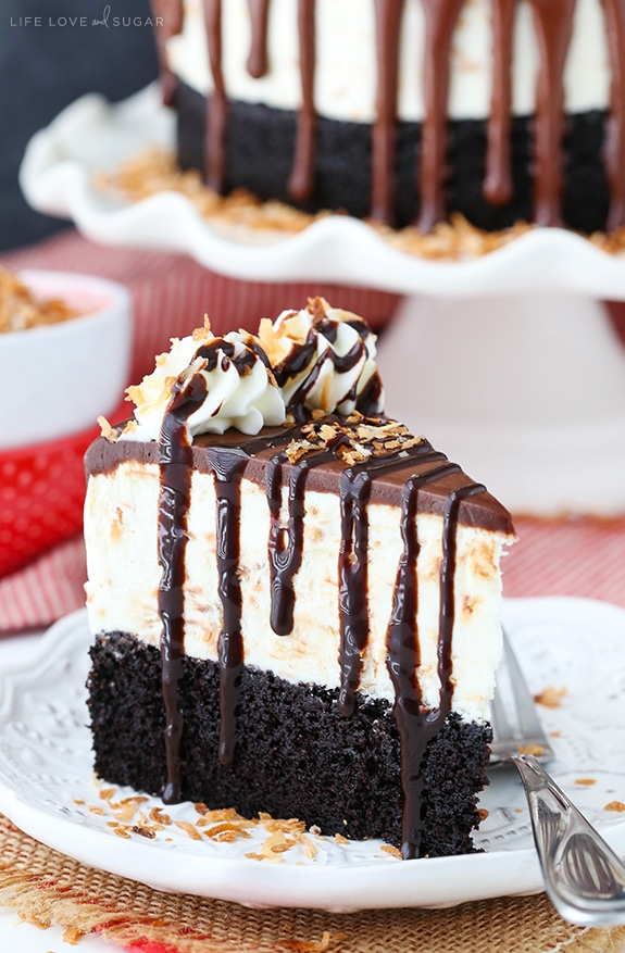 Toasted Coconut Chocolate Ice Cream Cake slice