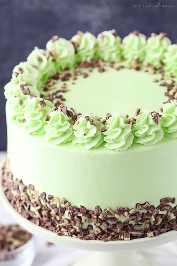 Mint Chocolate Chip Layer Cake - Life Love and Sugar