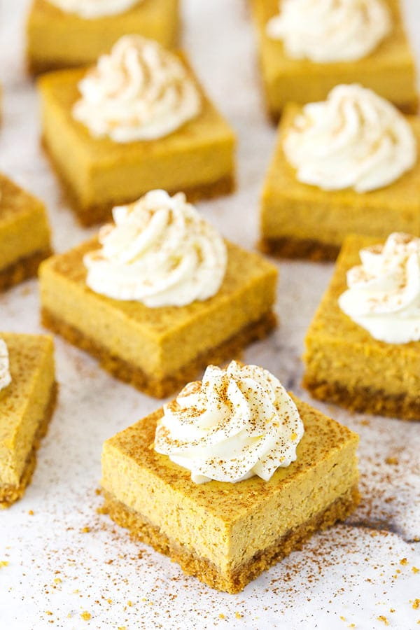 Overhead image of pumpkin cheesecake bars with whipped cream on top