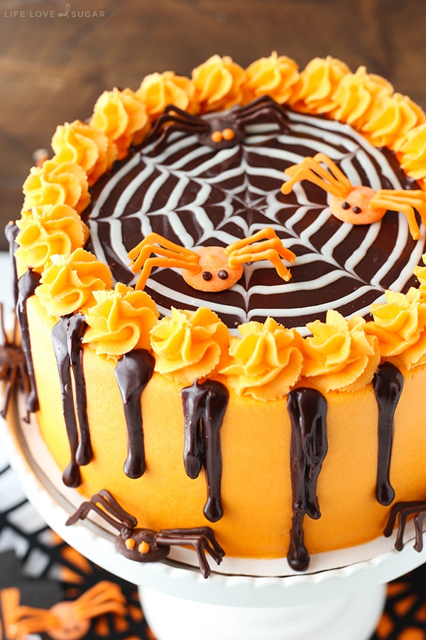 Favorite Spiderweb Chocolate Cake