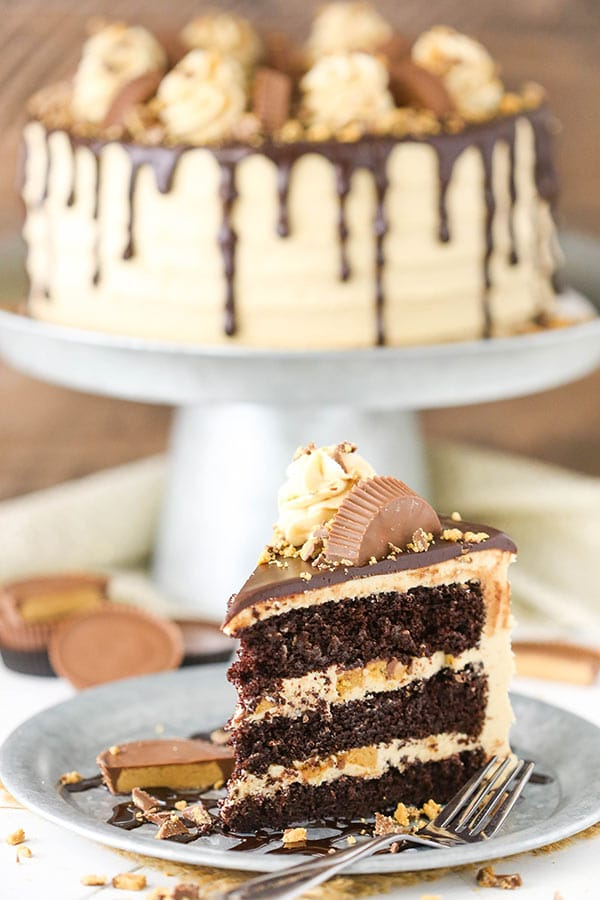 Peanut Butter Chocolate Layer Cake - Life Love and Sugar