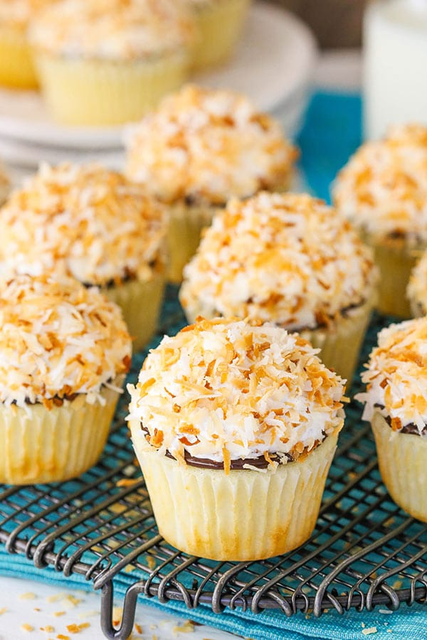 Best Coconut Macaroon Cupcakes