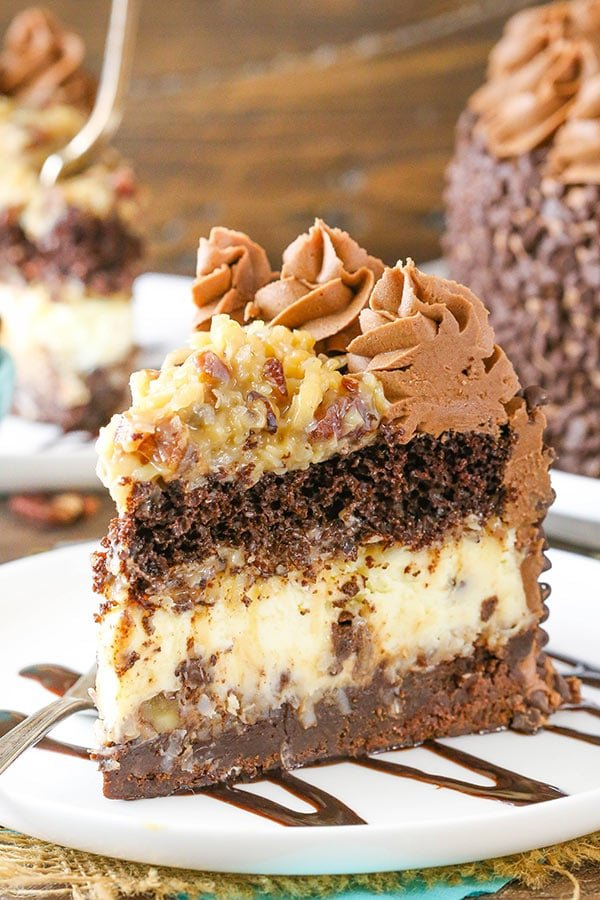 Outrageous Chocolate Coconut Cheesecake Cake Life Love