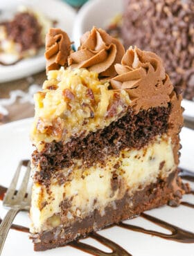 slice of Outrageous Chocolate Coconut Cheesecake