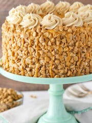 Loaded Peanut Butter Layer Cake! Peanut butter in the cake, frosting and decor!