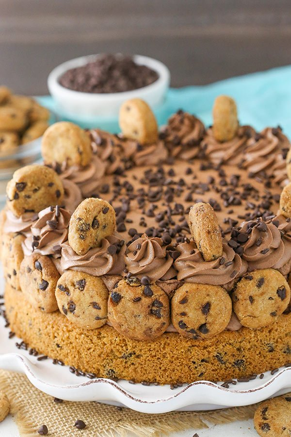 Chocolate Chip Cookie Bottomed Cheesecake - chewy chocolate chip cookie on the bottom and smooth chocolate cheesecake on top! YUM!