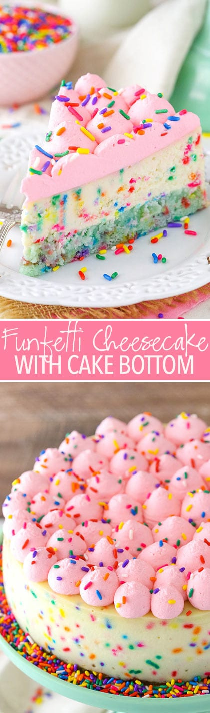 Funfetti Cheesecake with Cake Bottom - thick and creamy cheesecake with a cake bottom! So good!