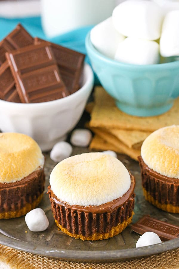 Mini Smores Cheesecakes - a graham cracker crust, chocolate filling, melted chocolate and melty marshmallow!