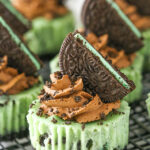 Mint Chocolate Oreo Mini Cheesecakes