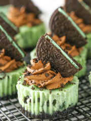 Best Mini Mint Oreo Cheesecake Recipe