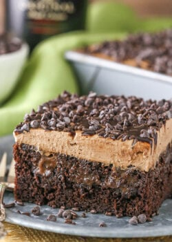 close up image of Baileys Chocolate Poke Cake