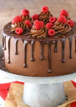 image of Raspberry Chocolate Layer Cake on cake stand