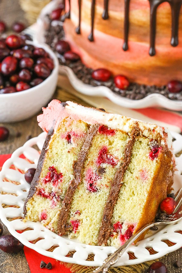 Cranberry Fudge Layer Cake - moist cranberry cake with chocolate fudge frosting! Delicious cake for the holidays!