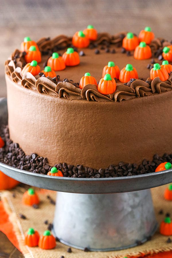 Pumpkin Chocolate Chip Cake decorated cake