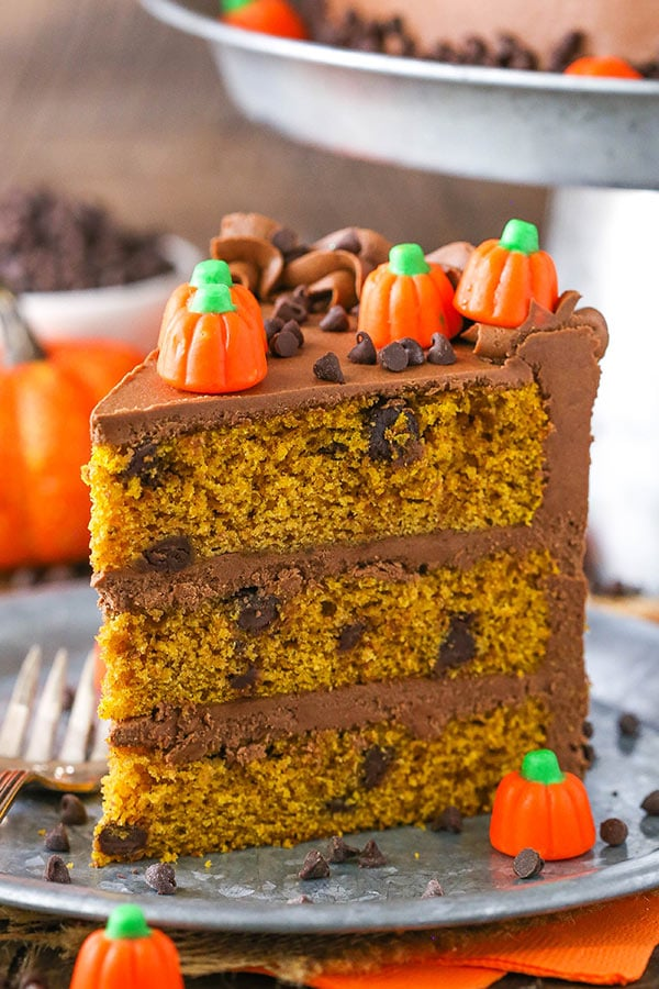 This Pumpkin Chocolate Chip Cake is a tender, moist pumpkin cake with chocolate chips and a silky smooth chocolate frosting made with melted chocolate! Perfect for fall and the holidays!