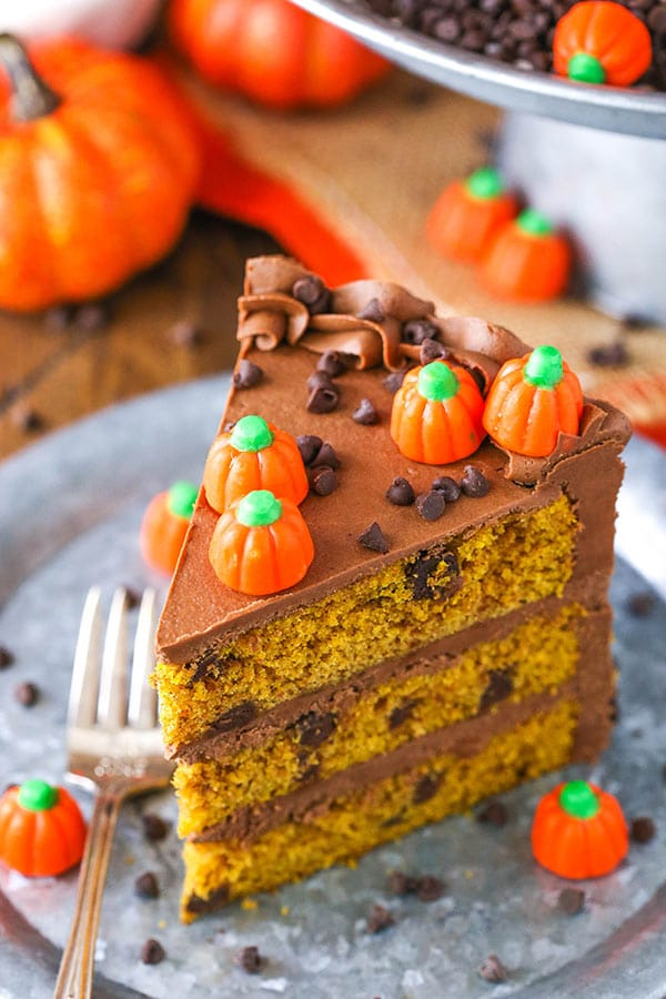 slice of pumpkin chocolate chip cake