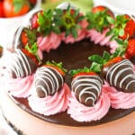 Full image of Chocolate Covered Strawberry Cheesecake