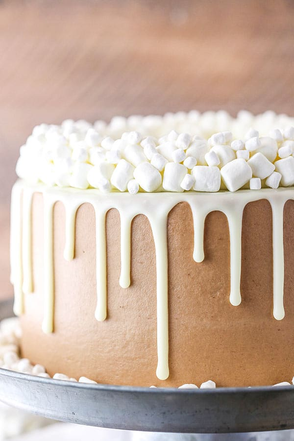 This Hot Chocolate Cake is a moist chocolate cake, hot chocolate buttercream frosting and marshmallow filling!