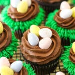 Overhead image of Easter Egg Chocolate Cupcakes