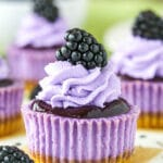 Mini Blackberry Lavender Cheesecakes