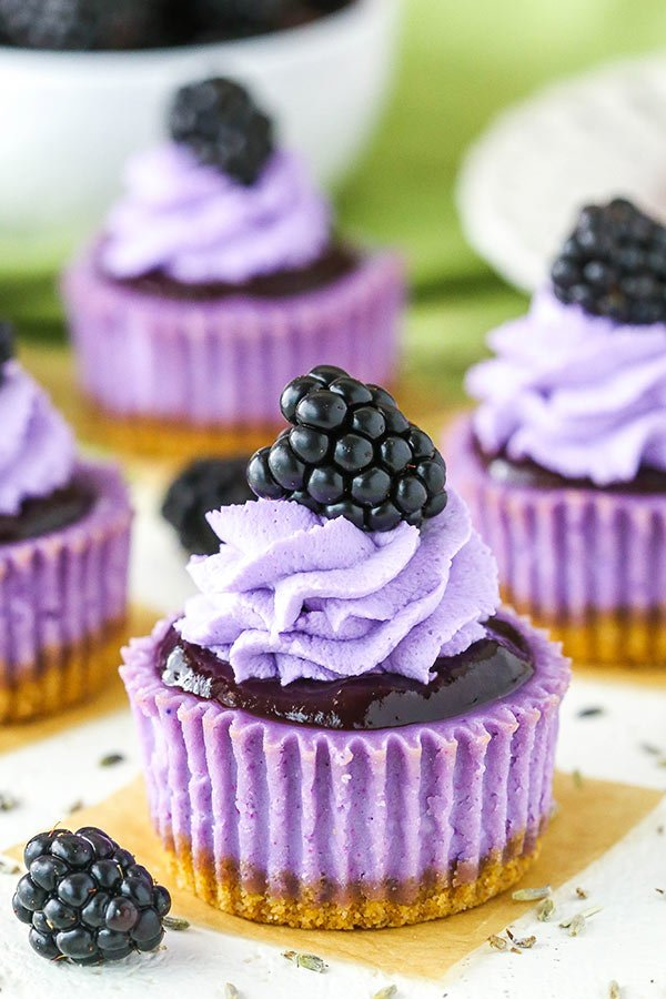 mini blackberry lavender cheesecake