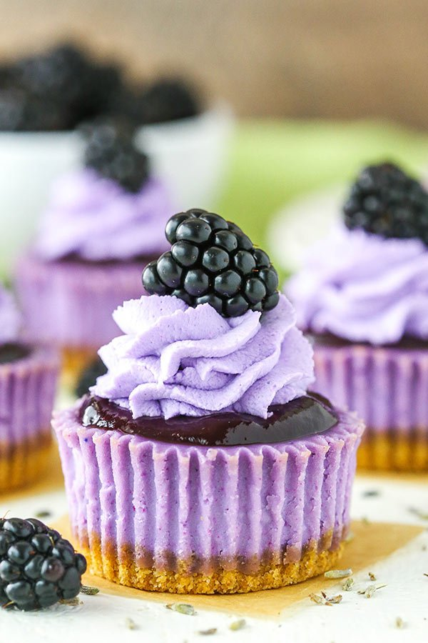 close up of blackberry lavender cheesecake