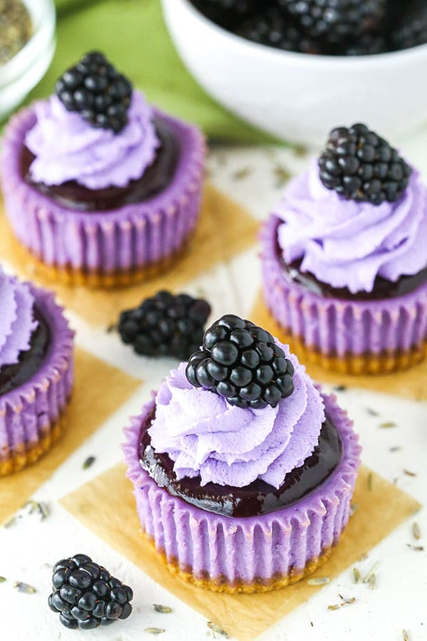 overhead angle of mini blackberry lavender cheesecakes