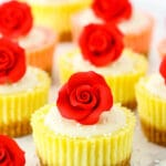Mini Rose Cheesecakes