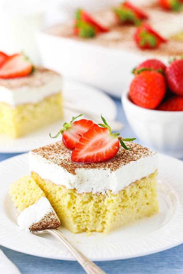 bite of tres leches cake