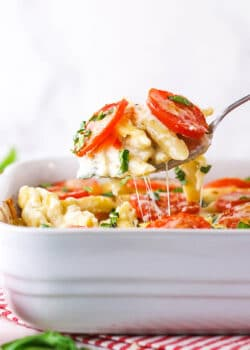 Tomato Basil Macaroni and Cheese being scooped up