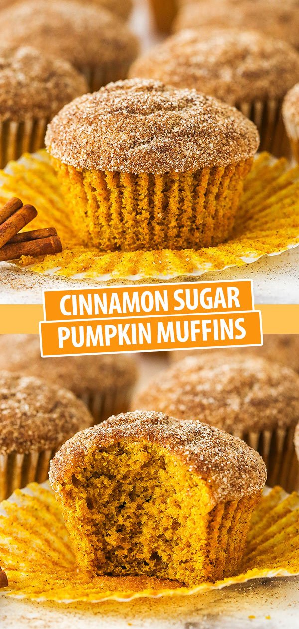 cinnamon sugar pumpkin muffin with liner pulled off and with a bite taken